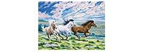 Galloping horses, zestaw do numeromalowania, Reeves