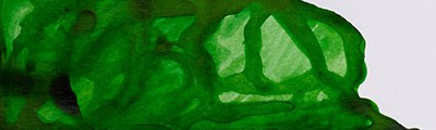 011 Apple green, tusz rysunkowy Winsor & Newton, 14ml