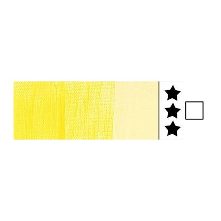 272 transparent yellow amsterdam