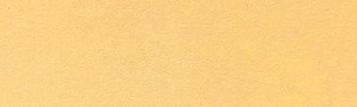 Buttercup, papier Pastelmat, 24 x 32 cm