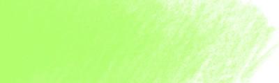 166 Grass green, Polychromos kredka artystyczna