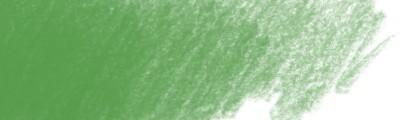 267 Pine green, Polychromos kredka artystyczna