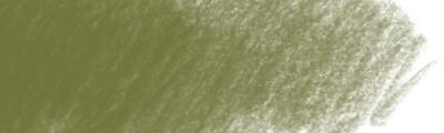 173 Olive green yellowish, Polychromos kredka artystyczna