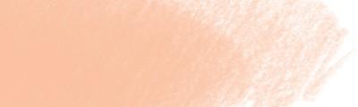 189 Cinnamon, Polychromos kredka artystyczna