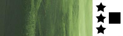 819 Sap green, farba olejna Rive Gauche 200 ml