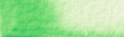 30 Zieleń cynkowa, farba akwarelowa Renesans