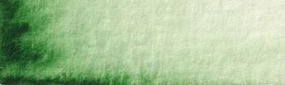 35 Zieleń hookera, farba akwarelowa Renesans