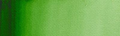 311 Hooker's green, akwarela Professional, półkostka