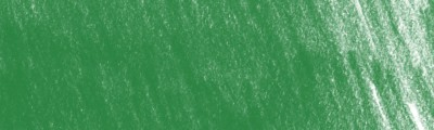 4900 Sap green, artystyczna kredka rysunkowa Derwent