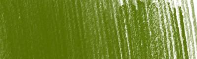 52 Olive Green, kredka rysunkowa Derwent Procolour