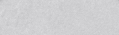 920.5 PanPastel METALLIC Silver 9ml