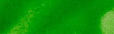 150 Light Green, tusz alkoholowy Aura, 15 ml