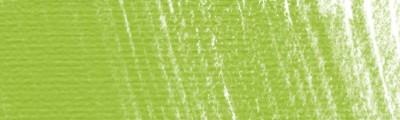 P480 May green, pastel sucha w kredce Derwent