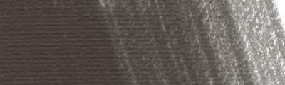 17 Driftwood, węgiel barwiony w kredce Derwent