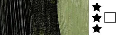 620 S2 Olive Green, farba olejna Rembrandt 40 ml