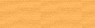 P080 Marigold, pastel sucha w kredce Derwent
