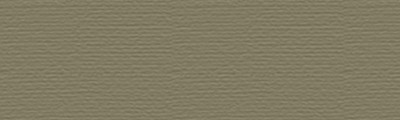 P520 Dark olive, pastel sucha w kredce Derwent