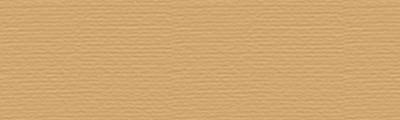 P570 Tan, pastel sucha w kredce Derwent