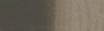 456 Kość palona, farba akwarelowa Karmański