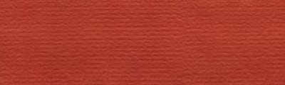 663 Róż cielisty, tempera Karmański