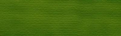 696 Zieleń soczysta, tempera Karmański