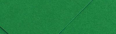 30 Zielony, papier Colorline Canson, 50 x 65cm