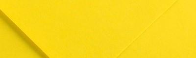 4 Kanarkowy, papier Iris Canson Ÿ, 185g A3