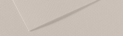 120 Pearl grey, Mi-Teintes Ÿ Canson Ÿ A4
