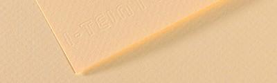 111 Ivory, Mi-Teintes Canson 50 x 65 cm