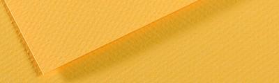 400 Canary, Mi-Teintes Canson 50 x 65 cm