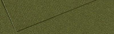 448 Ivy, Mi-Teintes Canson 50 x 65 cm
