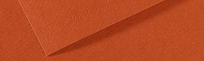 130 Red earth, Mi-Teintes Canson 50 x 65 cm