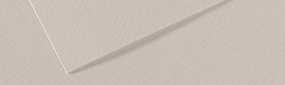 120 Pearl grey, Mi-Teintes Canson 50 x 65 cm