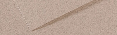 426 Moonstone, Mi-Teintes Canson 50 x 65 cm