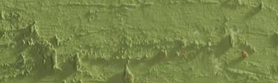 pastel olejna Neopastel khaki green