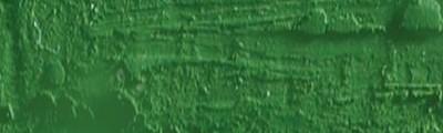 pastel olejna Neopastel moss green