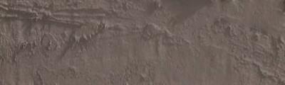 pastel olejna Neopastel vandycke brown