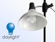 Oświetlenie Lampy DAYLIGHT