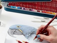 Zestawy kredek i ołówków Pastele w kredkach